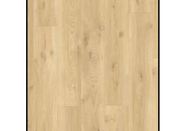 BACP40018 Eiken drijfhout beige