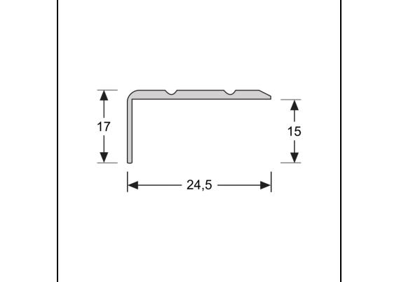 Hoeklijnprofiel zelfkl. 17 mm RVS